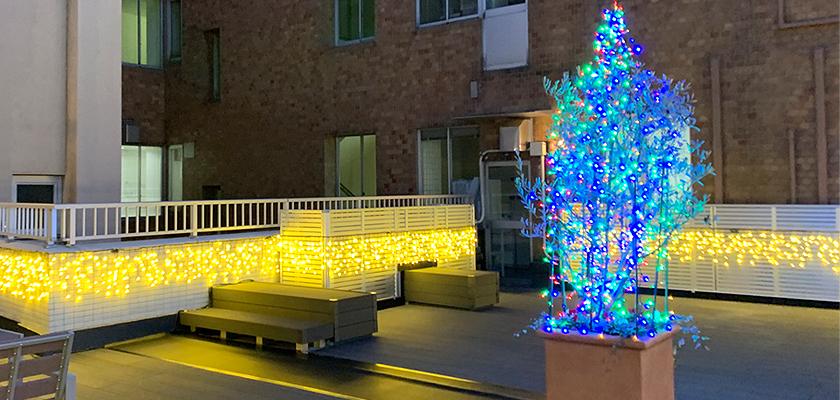 イルミネーションライトの販売施工例【福岡県・久留米市:弥永共立病院様】