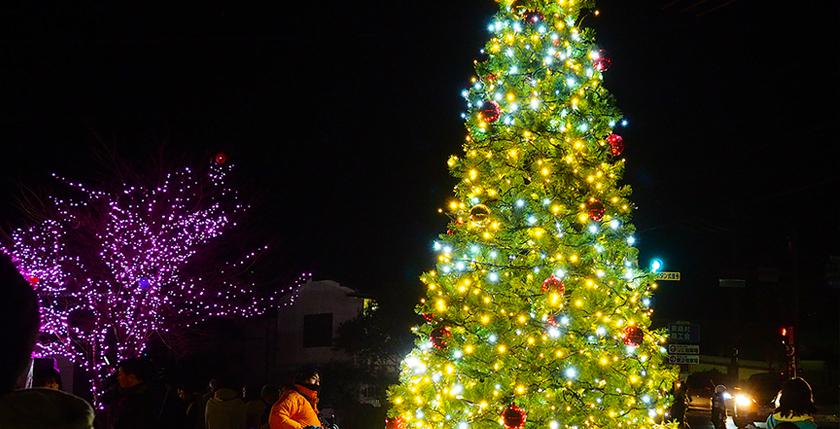 ストリングライトをクリスマスツリーへ装飾