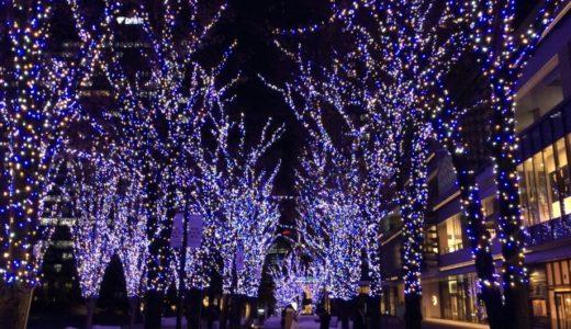 東京・大阪・名古屋のイルミネーションの販売店の特徴について